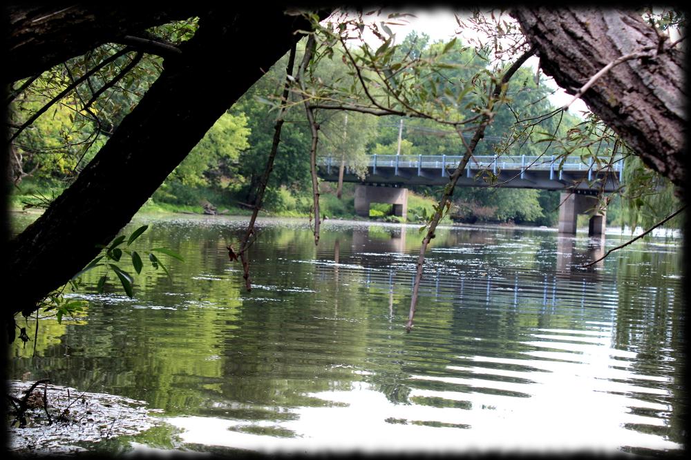 Illinois wisconsin fishing milwaukee river fly fishing pike for Milwaukee river fishing