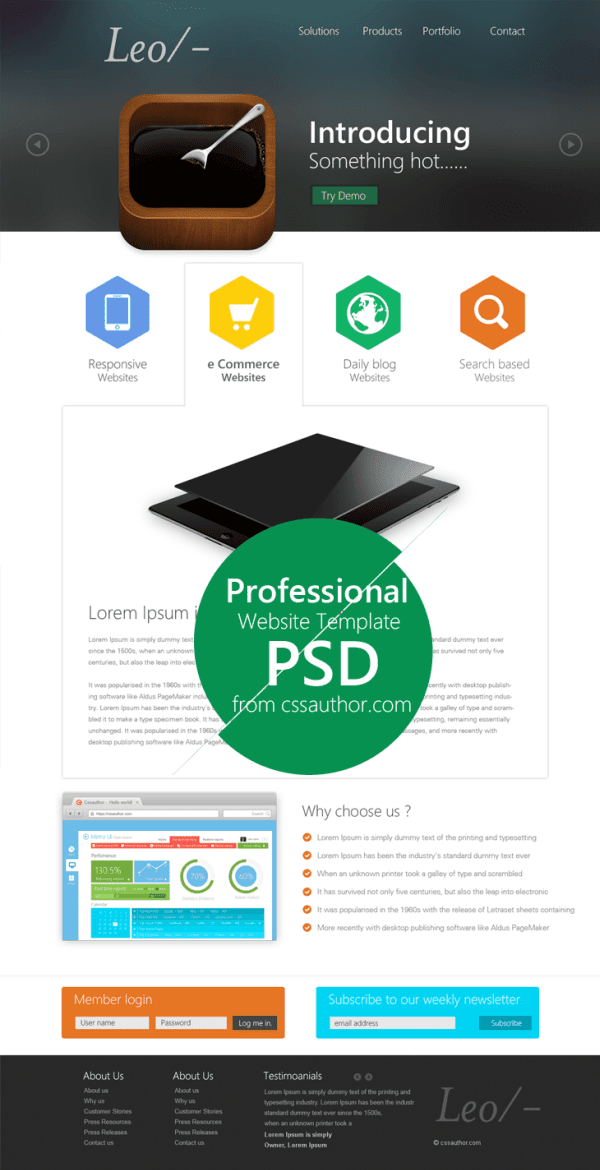 Website Template Design PSD