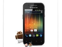 Handphone Smartfren Android Murah Berkualitas