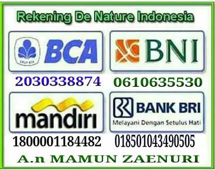 NO REX. DE NATURE INDONESIA