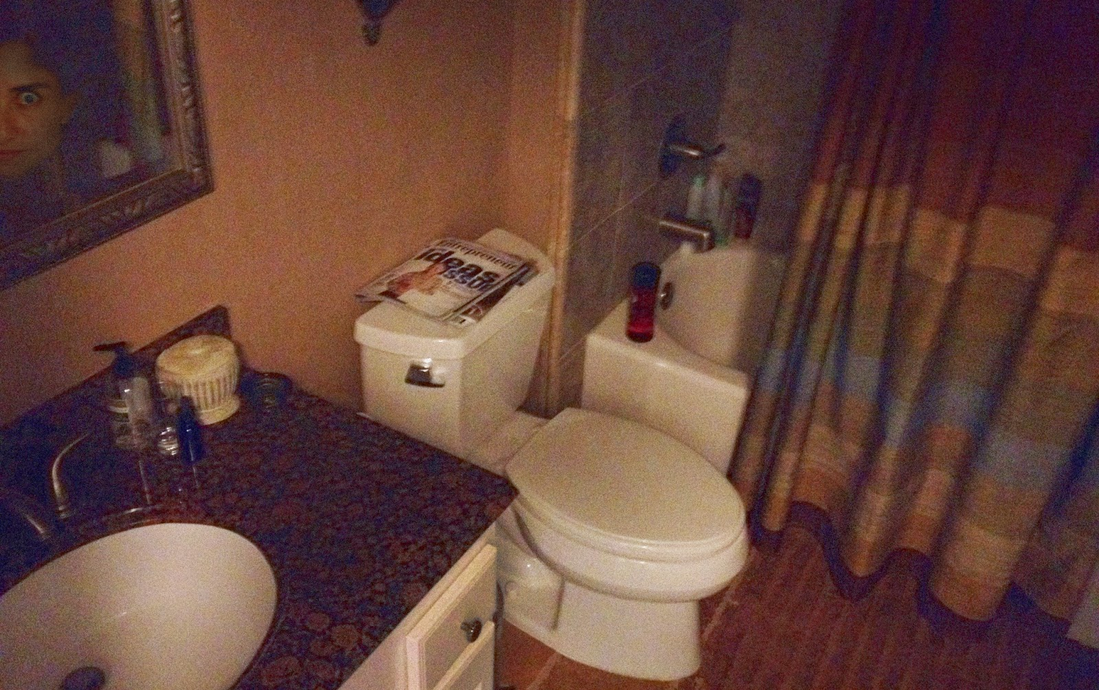 10 Reasons Why the Bathroom is the Scariest Room in the House