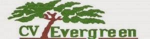 Lowongan Kerja CV. Evergreen Jakarta Januari 2015