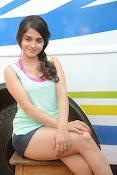Sheena shahabadi sizzling pics-thumbnail-7