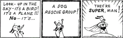 Freckles the Dog Mutts Comic