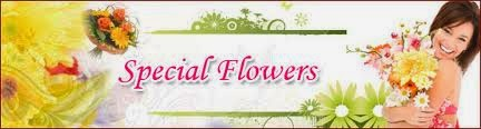 Special send flowers