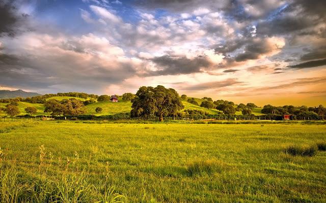 Spring Green Landscape