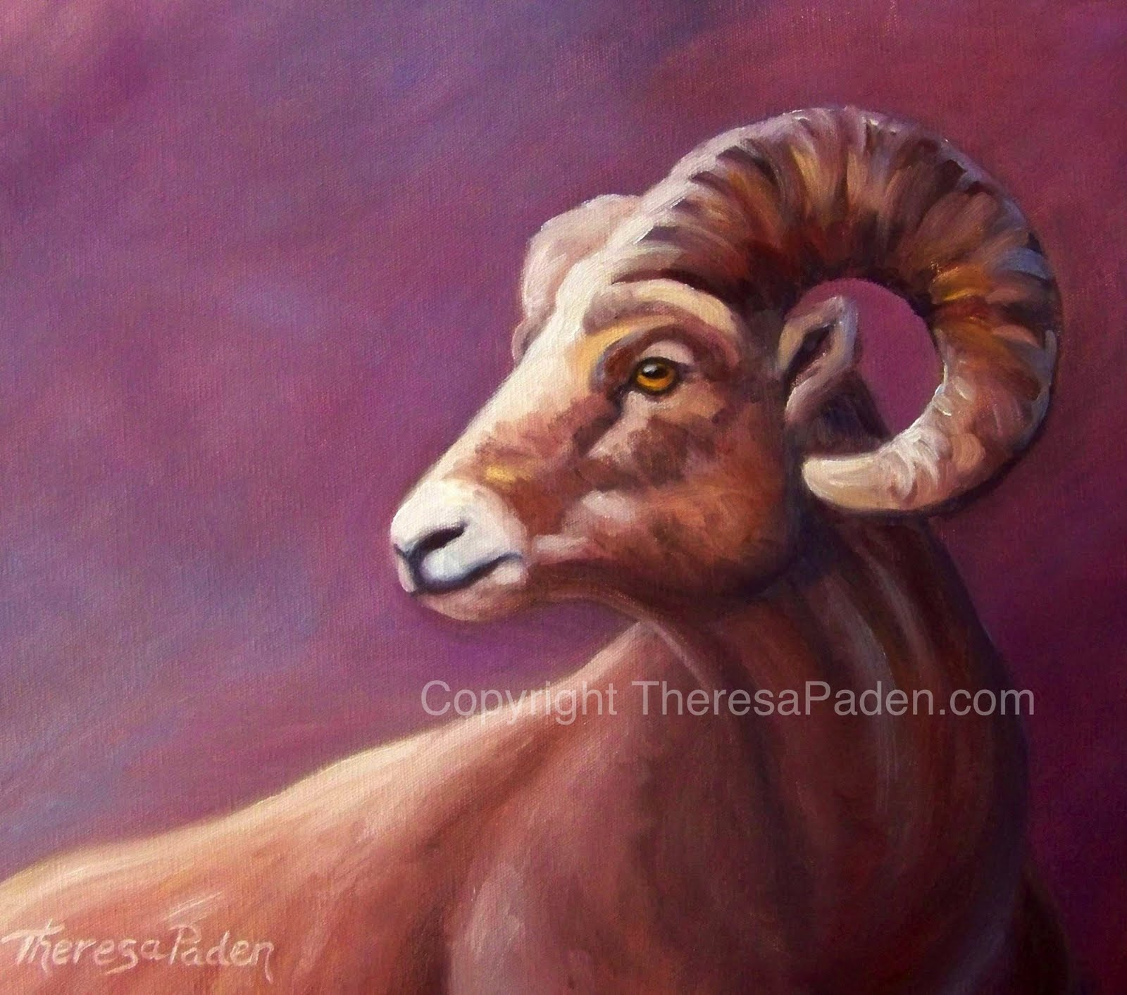 Paintings By Theresa Paden Desert Bighorn Sheep Oil Painting By