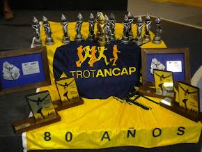 Campeonato AAU 2011