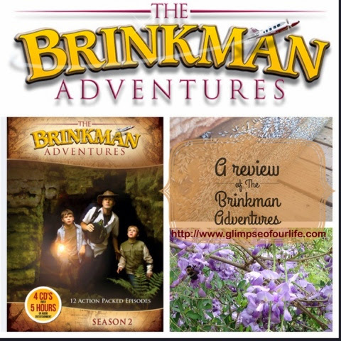 review of the Brinkman Adventures