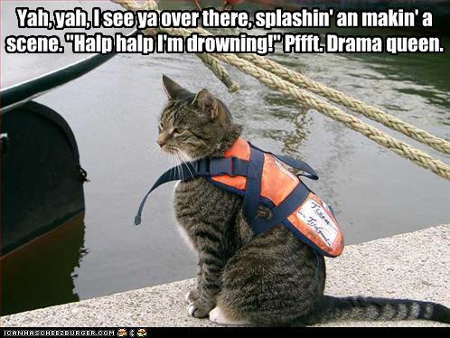 lol cat pffft