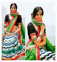 Latest Saree Designs 2014