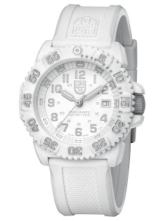 Luminox watch brand