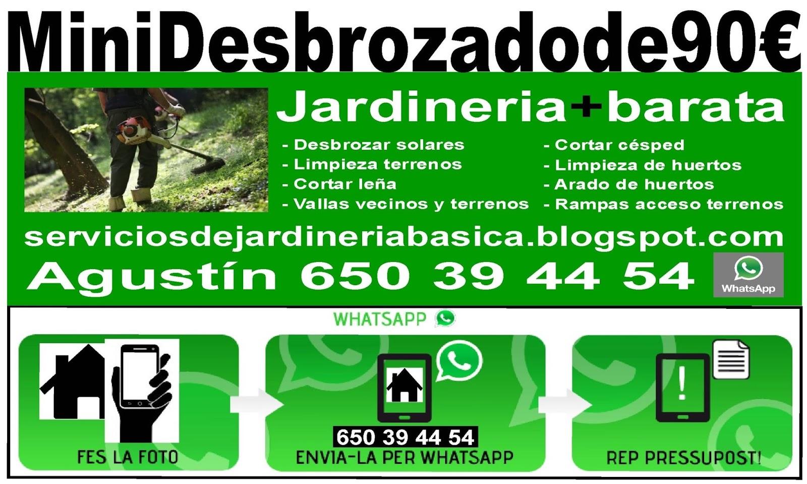 Serviciosdejardineriabasica minidsebrozadode90 for Jardineria barata barcelona