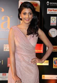 Anisha Ambrose Still in Stylish Dress at IIFA Utsavam Awards 2016 Day 2 (9)