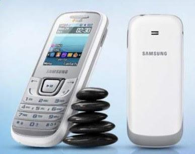 Samsung-Guru-1207