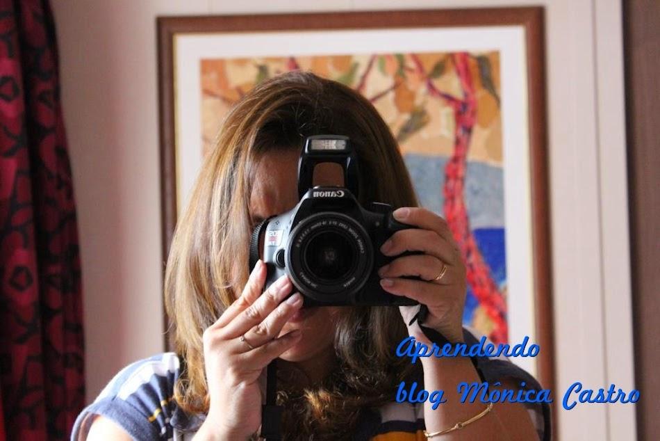 Aprendendo ...blog Monica Castro