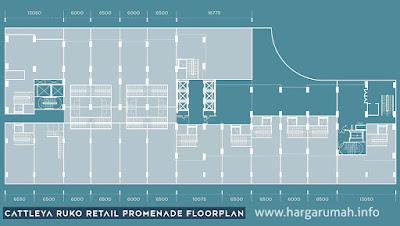cattleya ruko retail promenade floorplan