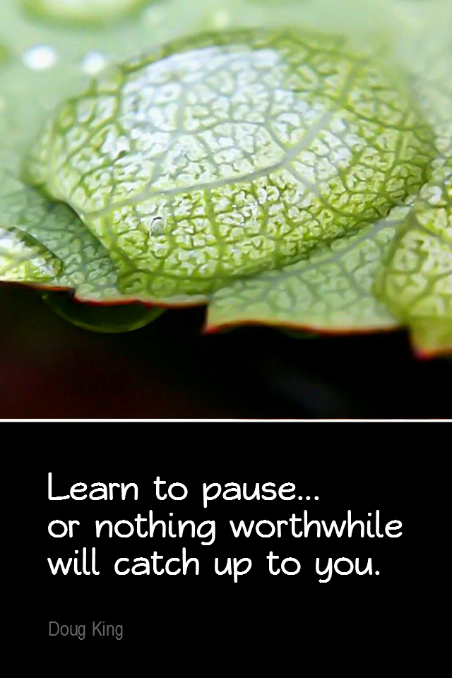visual quote - image quotation for MINDFULNESS - Learn to pause... or nothing worthwhile will catch up to you. - Doug King