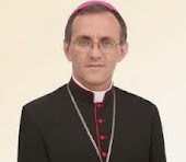 Diocese São José dos Pinhais