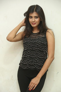 Hebah Patel glamorous Pictures 019.jpg