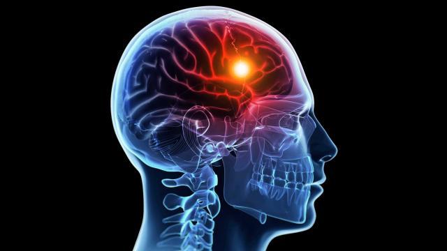 Предстательная железа у мужчин лечение форум
