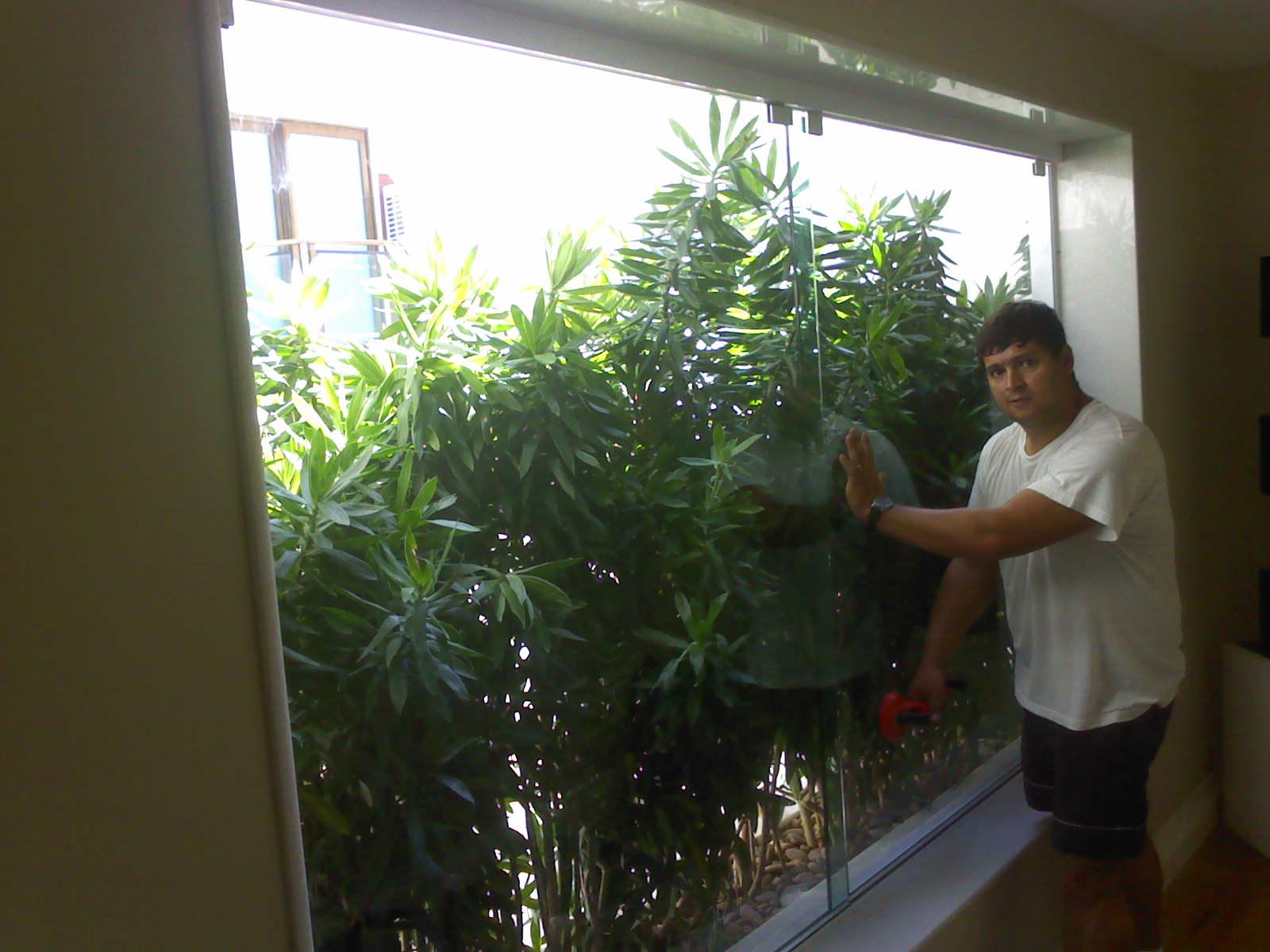 #7A9A31  JORDÃO: Jardim de inverno com fechamento em vidro temperado 224 Janelas De Vidro Para Jardim De Inverno