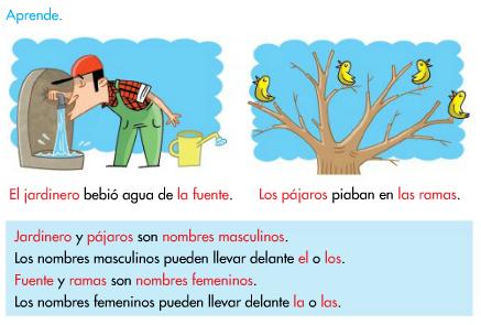 http://www.primerodecarlos.com/SEGUNDO_PRIMARIA/enero/tema2/actividades/lengua/aprende_genero/visor.swf