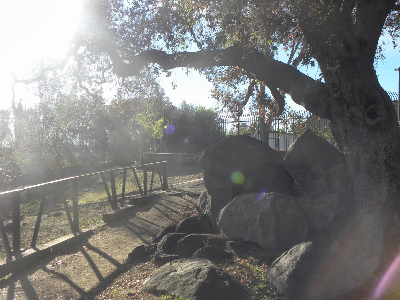 Mountain Shadows Mobile Home Park