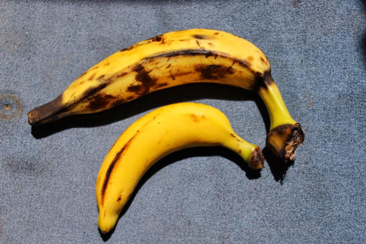 28 l 39 ombre gratin de bananes jaunes au lait de coco for Banane plantain au barbecue