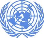 Birleşmiş Milletler Sınavı
