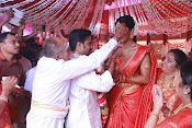 Amala Paul Al Vijay wedding Photos-thumbnail-27