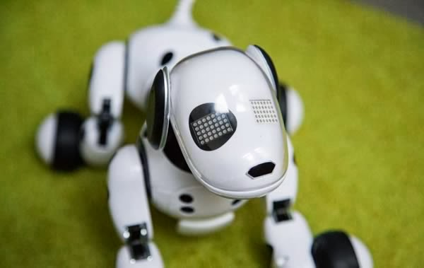 The Robotic Dog Zoomer