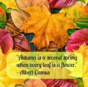 Autumn is a second spring  More Than Sayings