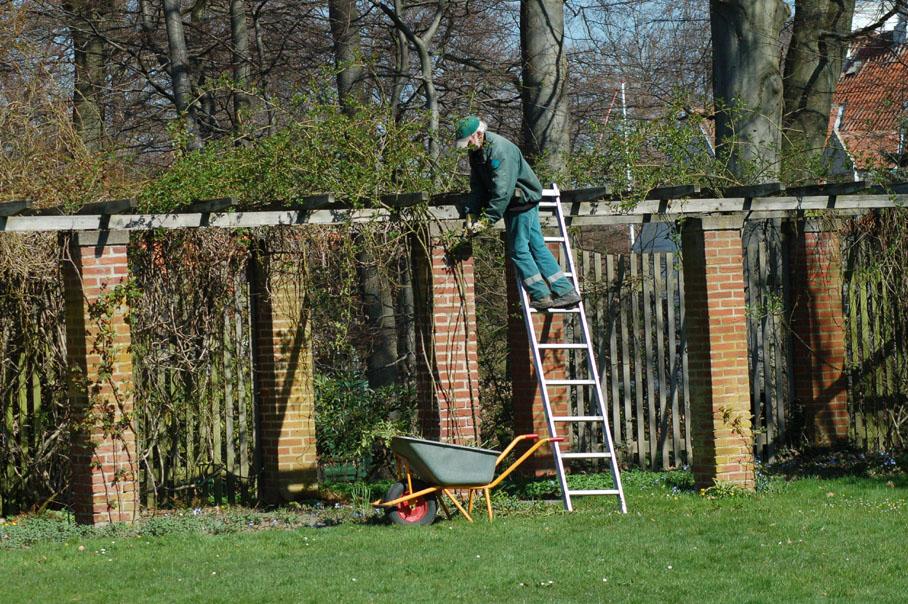 gardener in spring