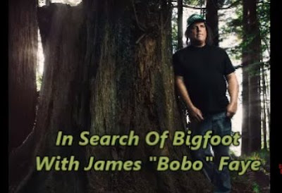 James Bobo Faye Interview
