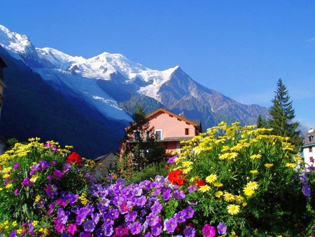 Flowers for flower lovers flowers sceneries beautiful flowers natural landscapes - Beautiful panoramic view house to take full advantage of the scenery ...