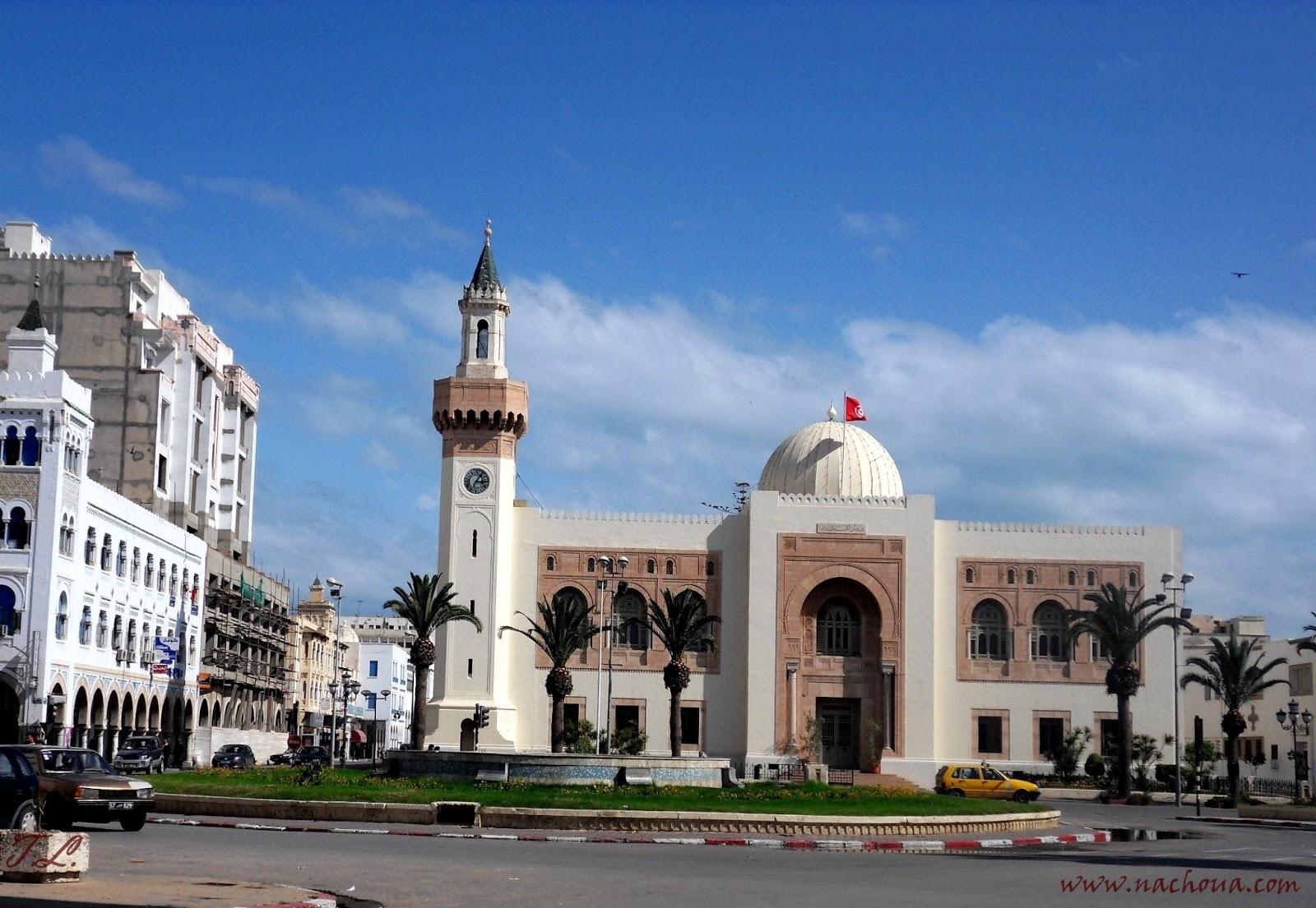 Culture et patrimoine de tunisie en images mohamed for Piscine demontable tunisie