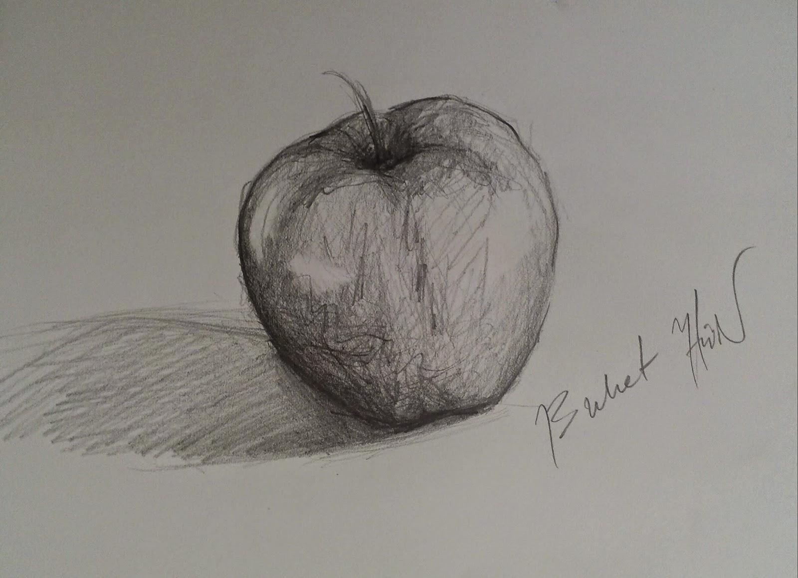 Bir baykuş nasıl çizilir: bir ustalık sınıfı