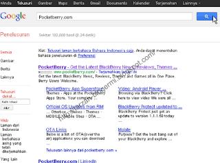 Pocketberry.com google site link