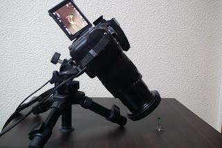 sigma 17-70mm フード無
