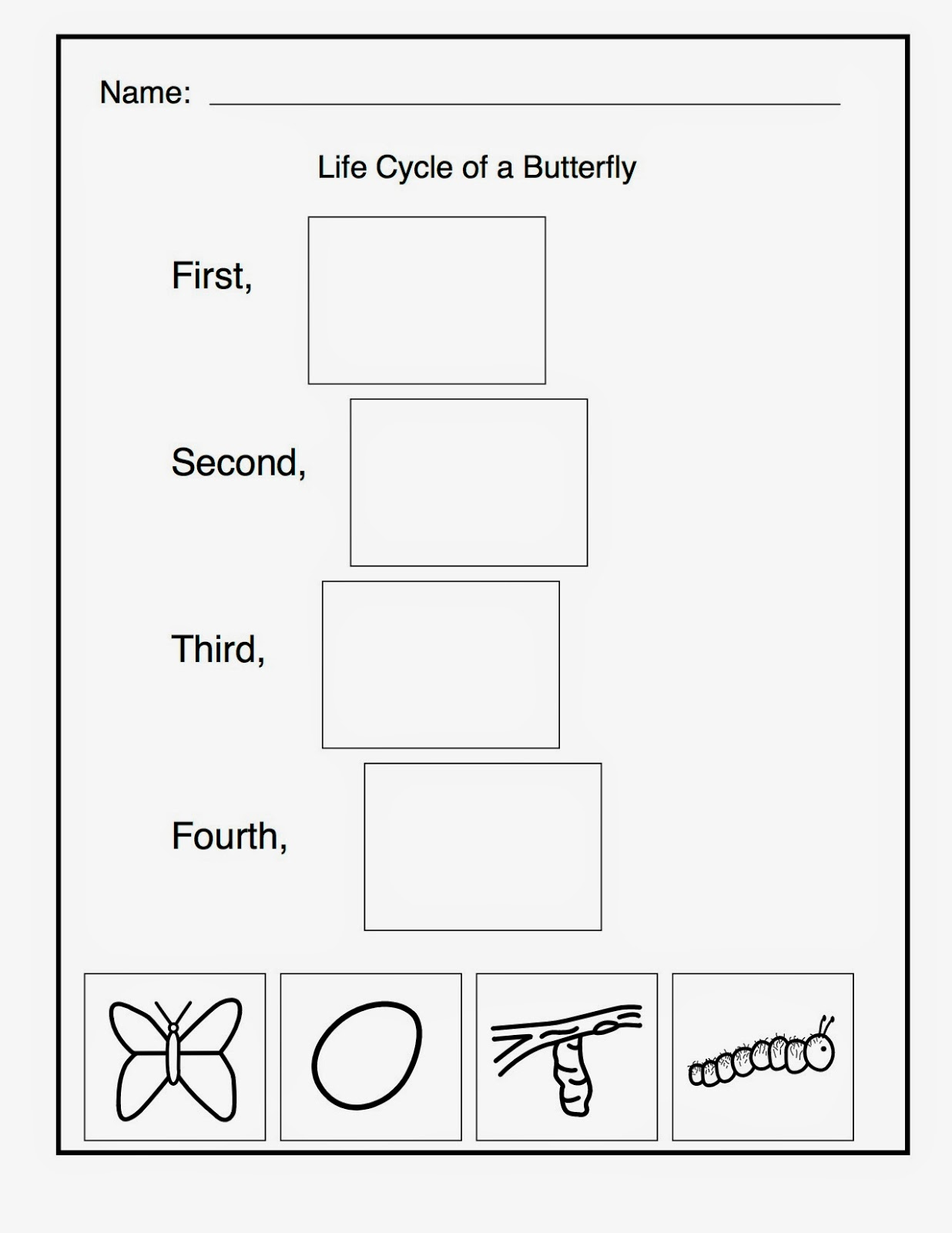 Displaying 12> Images For - Life Cycle Of A Butterfly Worksheet...