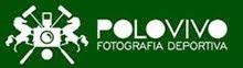 PoloVivo.net