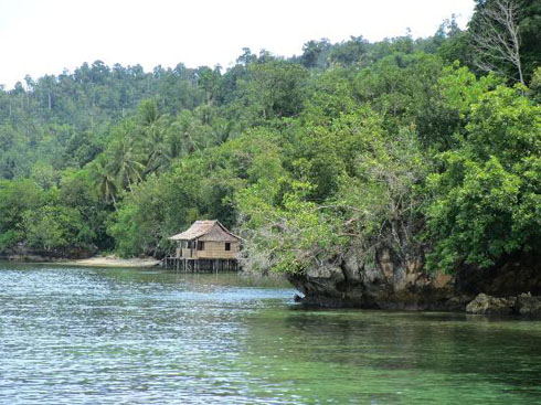Cheap Hotel In Raja Ampat