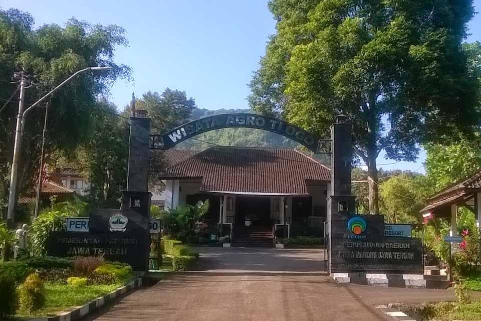 Tlogo Resort
