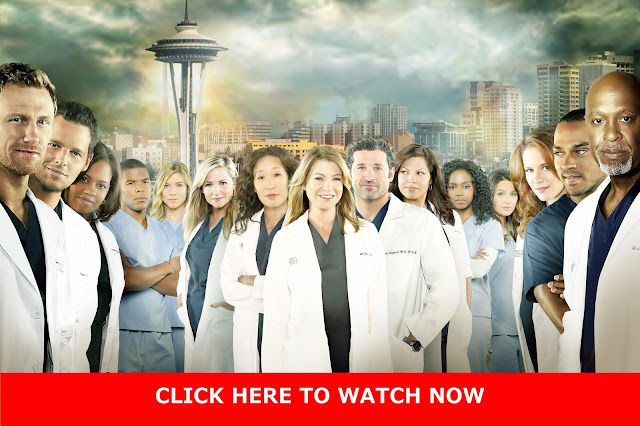 http://tvpassonline.blogspot.co.uk/2014/03/watch-greys-anatomy-season-10-episode.html