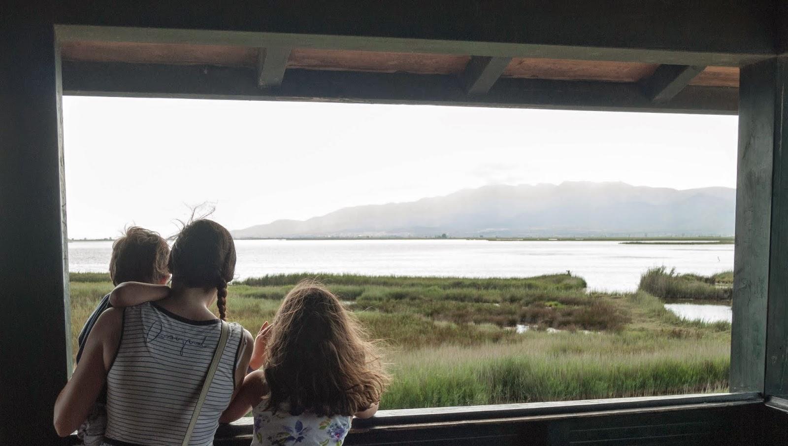 familia mirando el horizonte en busca de pájaros