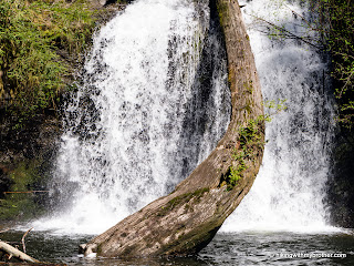 cherry creek falls marckworth forest hikingwithmybrother