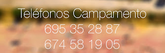 Teléfonos Campamento