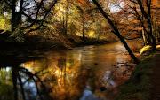El otoño reflejado en espejos naturales el otono reflejado en espejos naturales