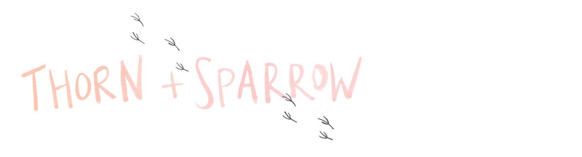 thorn + sparrow